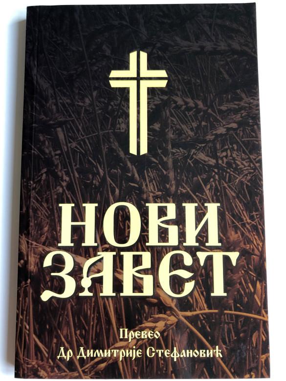 new living translation bible application