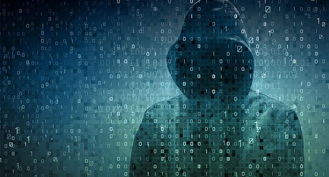 2017 application security statistics report