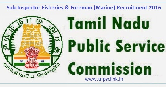 tnpsc group 2 exam 2012 online application