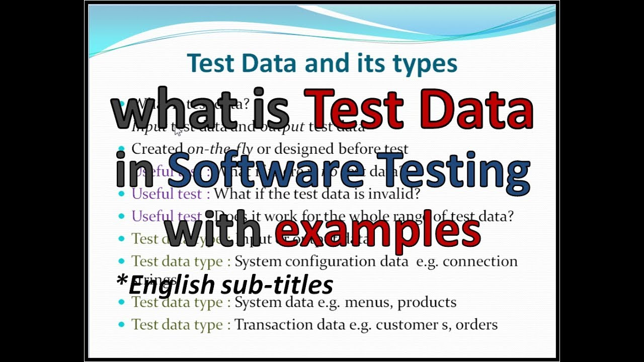 what is test data in audit application control
