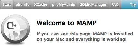 mamp test v8.exe application error