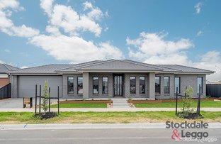 stockdale and leggo rental application carlton